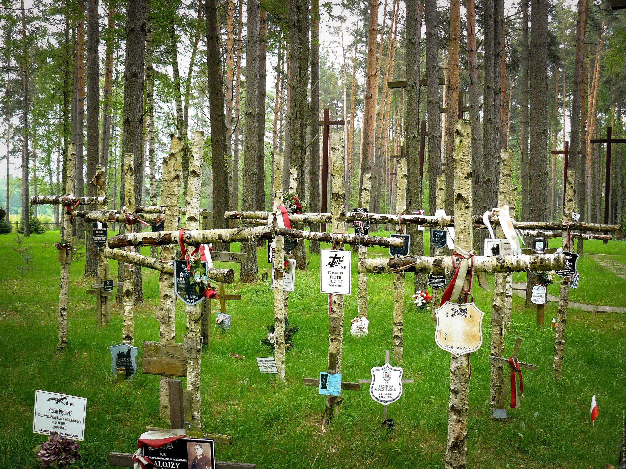 Крестов могильных «хоровод» набывшем расстрельном полигоне вМедном Тверской области. Вот только ктотампохоронен?