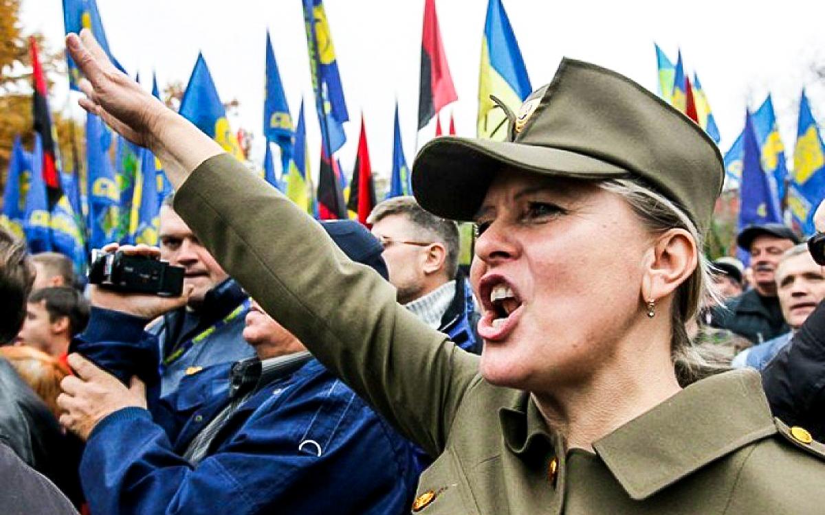 Втом, чтонаруинах Украины создано укро-нацистское государство— «заслуга» американских структур иихпартнёров